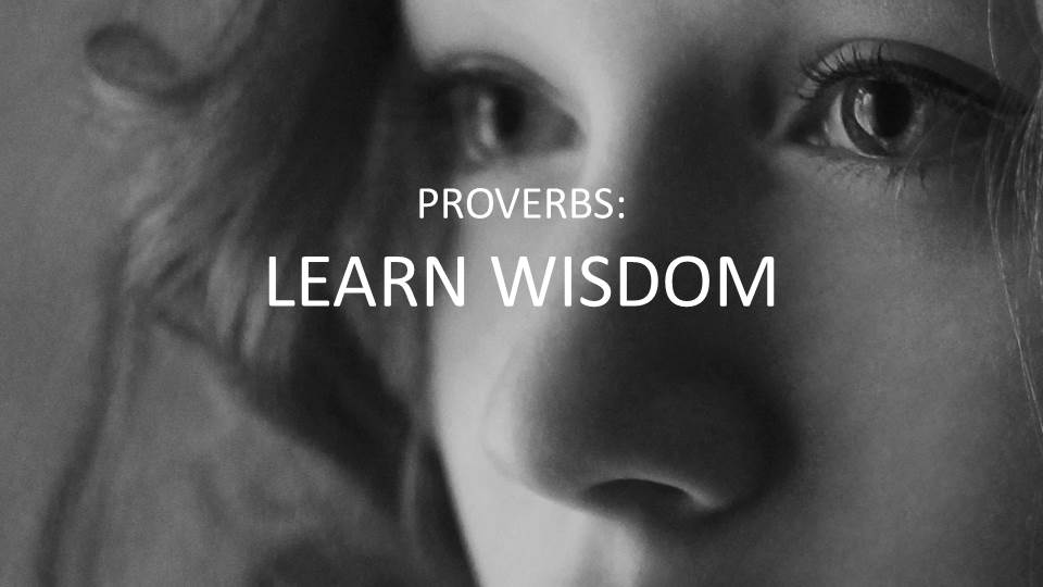 Proverbs 8 1 36 Wisdom S Resume Sojourn Bible Church